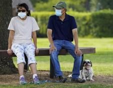 Koronavírus: 31 új eset volt szerdán