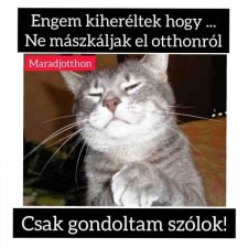 MARADJ OTTHON!