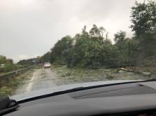Németországban már tombol Fabienne, hétfőre virradóra 100 km/órás szél csaphat le a Dunamenti-alföldre