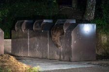 Kukába szorult egy medve Tusnádfürdőn