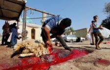 Túl sok juhot akarnak leölni a muszlimok Belgiumban