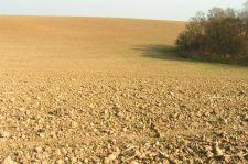Sok megyében már az egekben a termőföldek ára
