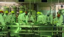 Japán tudósok tudományos célokra megismételnék a nukleáris katasztrófát