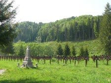 Ferdítéssel vádolják a magyar felet (Egyeztetés az úzvölgyi sírkertről)