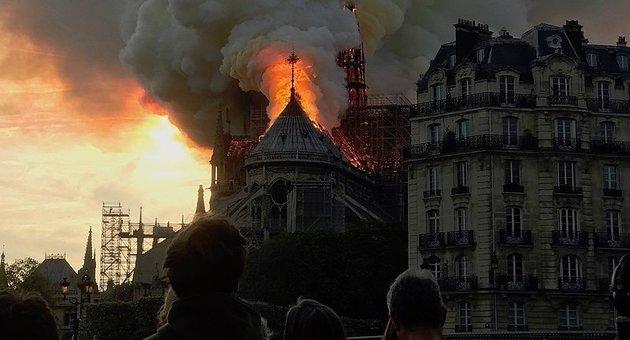 Kiválasztották a Notre-Dame újjáépítéséhez szükséges első nyolc tölgyfát