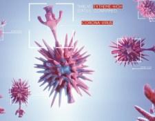 Koronavírus – Növeli a vírus fertőzőképességét egy mutáció