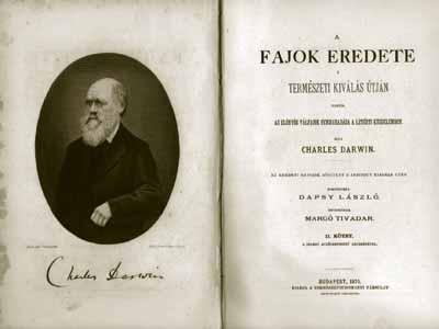 Bayer Zsolt: A fajok eredete