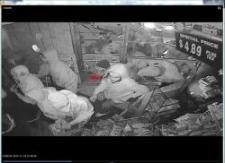 Így követelték polgári jogaikat a négerek: képek és videó egy bolt kifosztásáról