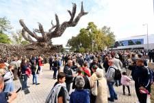 Félmilliárdot kapott a vadászati kiállítás vásárosnaményi helyszíne