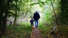 A koalíciós képviselők azt javasolják, a nyugdíjas nagyszülők is kaphassanak szülői támogatást unokájuk után