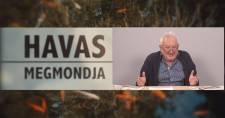 HAVAS MEGMONDJA – A gyűjtögető életmód a politikusokra is jellemző?