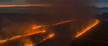 VIDEÓ: Nagy területen ég a nádas a Balatonnál