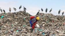 Az ENSZ emberi jogként ismerte el a tiszta környezethez való jogot
