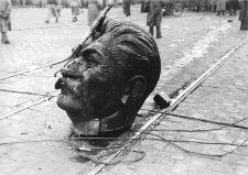 Magyarország elkeseredett küzdelme – 1956-os antibolsevista hőseinkre emlékezünk