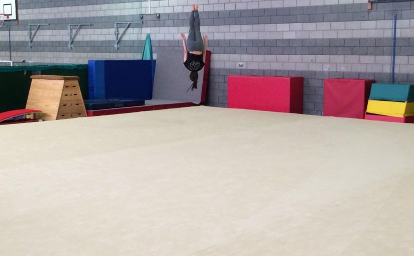 Gymnasts Spring Into Action