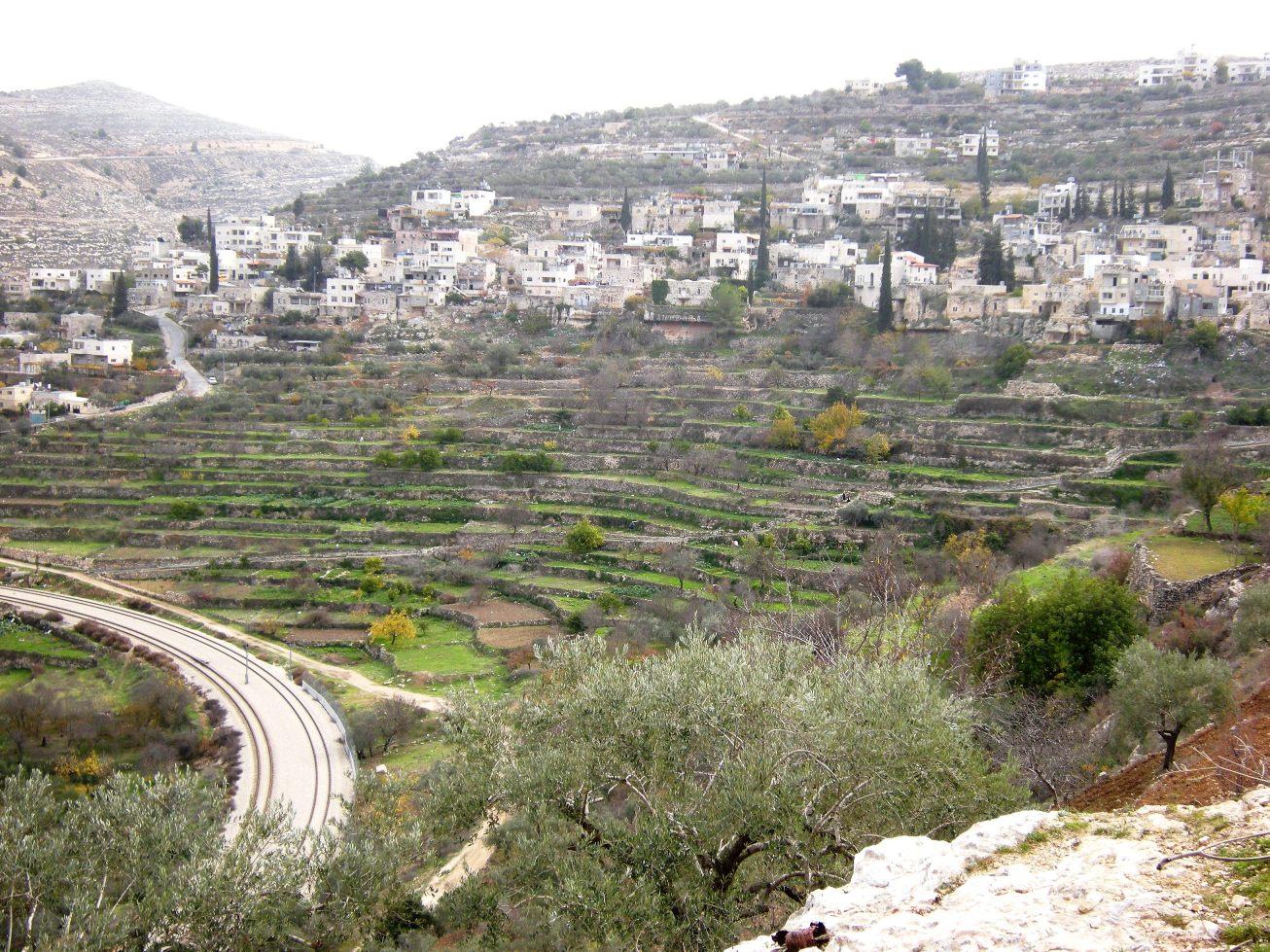PALESTINA Battir ha vinto  patrimonio Unesco  NenaNews