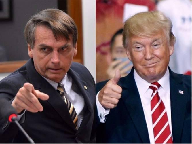 Quem é mais estúpido: Trump ou Bolsonaro?