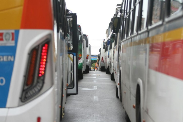 Montagem do galo gigante no Recife provoca mudança no itinerário de 146 linhas de ônibus