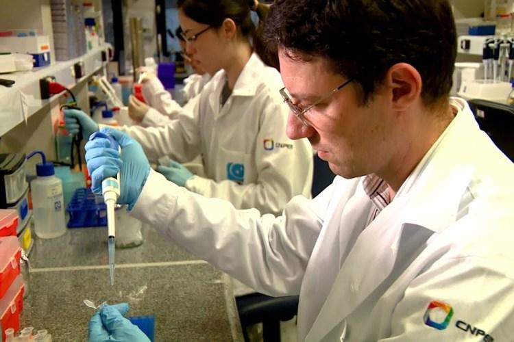 Vacina contra o câncer de pele desenvolvida no Brasil é testada com sucesso em cobaias