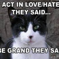 A Laugh on Tuesday: Love/Hate