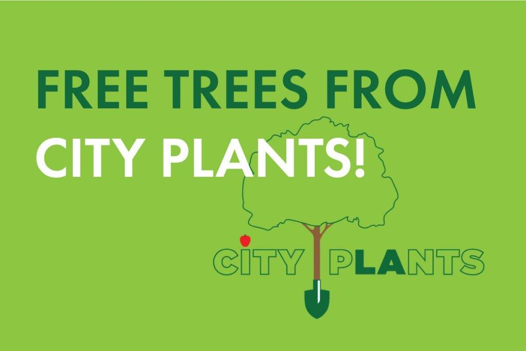 CITY-PLANTS