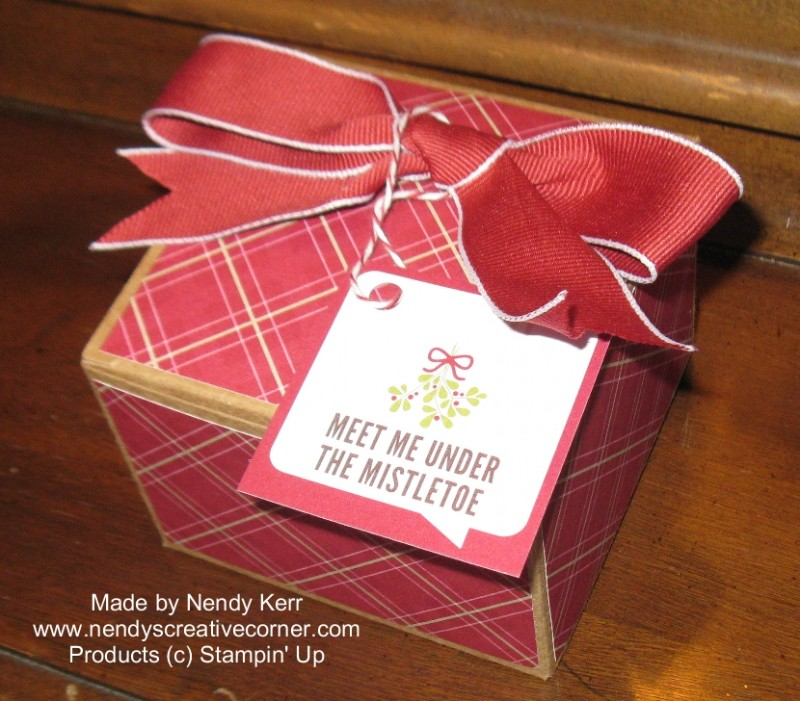 Make your own Christmas Kraft Box