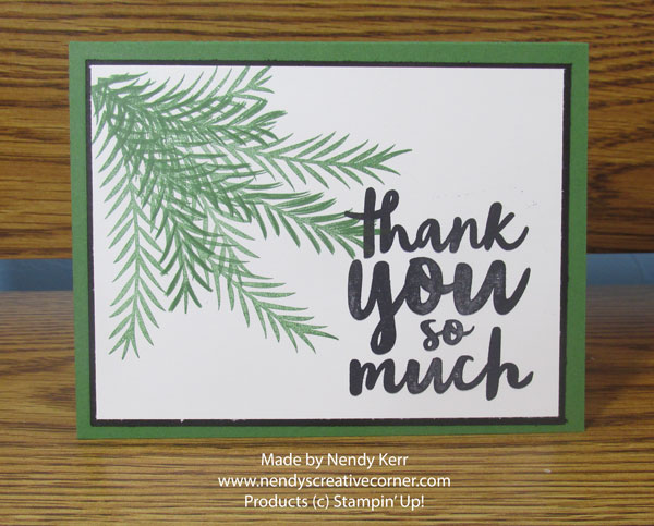 Christmas Pines Thank You Card