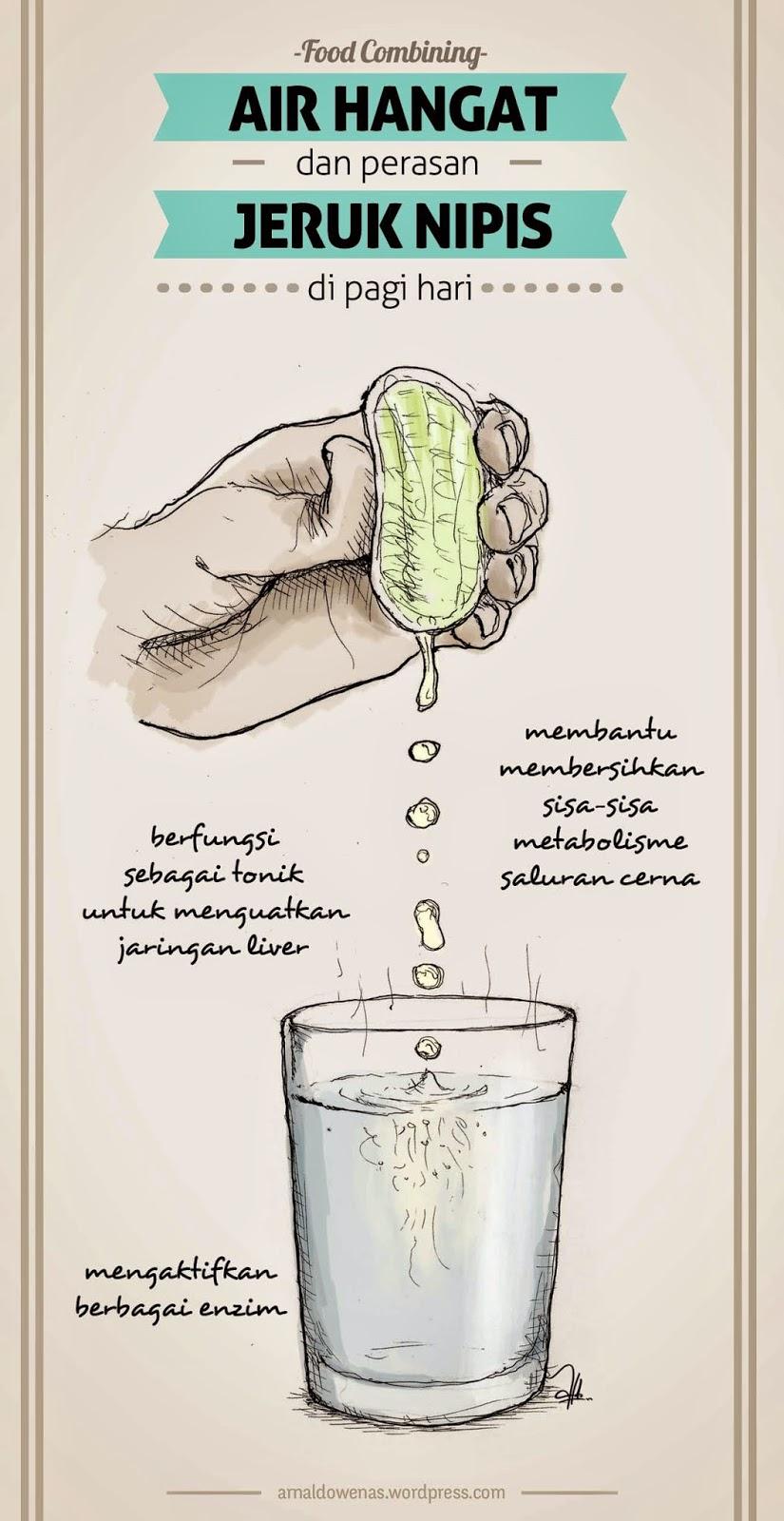 Diet Dengan Jeruk Nipis : dengan, jeruk, nipis, Pengalaman, Combining, (masih, Abal-abal), Blognya, Syera