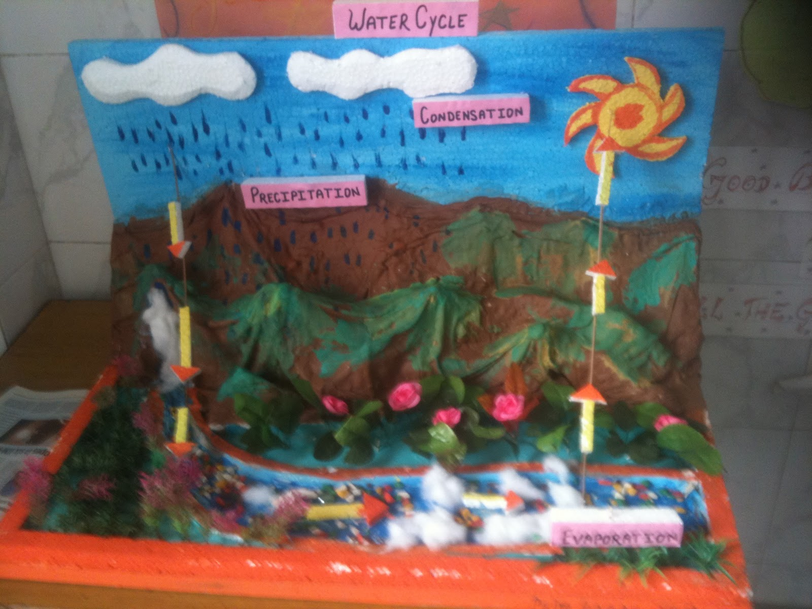 Water Cycle Model 2