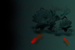 蓮と金魚(4パターン)