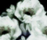 repeat-flower018_3