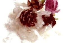 flower012