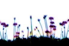 repeat-flower029_3