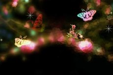 norepeat-butterfly008_3