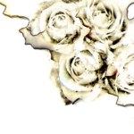 焦げた薔薇(4パターン)