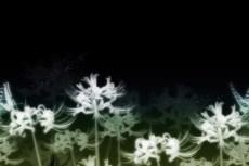 repeat-flower054_3