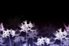 repeat-flower054_5