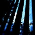 青空を映すビルの写真素材