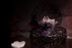 小物入れと花びらの写真素材
