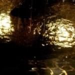 ライトアップされた噴水の水