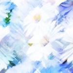 鮮やかな花々(3パターン)