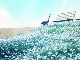【高解像度】ネモフィラとベンチのある丘(3パターン)