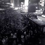【高解像度】渋谷のスクランブル交差点とハチ公前の桜