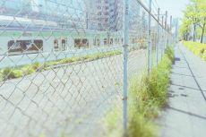 scenery327
