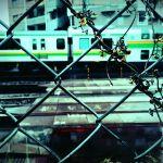 【高解像度】フェンス越しの湘南新宿ライン