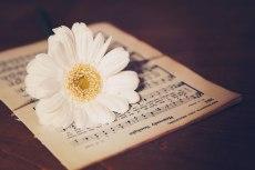 flower751