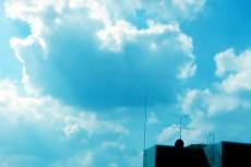 sky138
