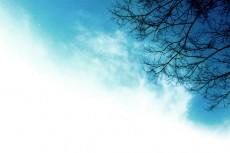 sky194_2