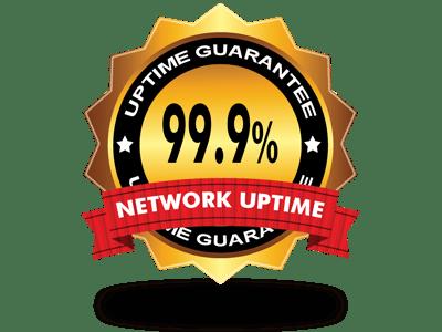 Гарантия времени безотказной работы сервера 99.9%