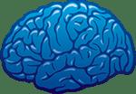 neocortex.dk
